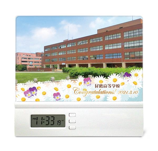 C40-daisy