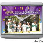SD-C33S-baseball-skycolor