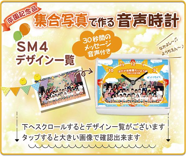 SE-SM4S