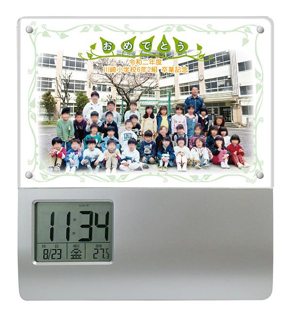 SM7-group-leaf
